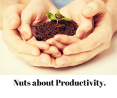 Nuts about Productivity